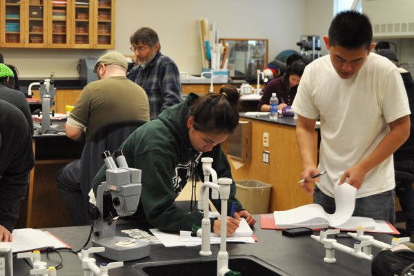 bio bridge students